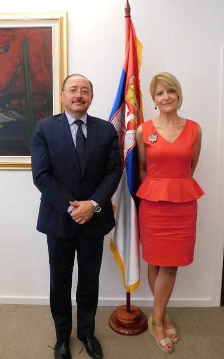 ambasada meksika u beogradu, dipos, nekretnine beograd, dipos nekrenine